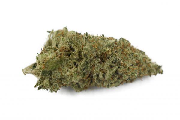 Cannabis Club BC - Buy Weed Online - Flower - Hybrid - Alaskan Purple
