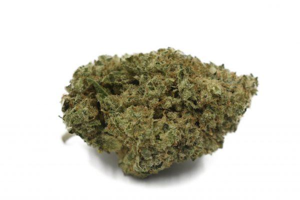 Cannabis Club BC - Buy Weed Online - Flower - Hybrid - Blue Dream